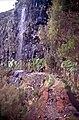 Madeira-16-Levada-Wasserfall-2000-gje.jpg