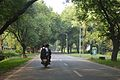 Main Road - IIT Campus - Kharagpur - West Midnapore 2015-09-28 4513.JPG
