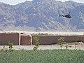 Maiwand, Afghanistan - panoramio (21).jpg