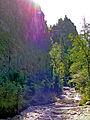 Male Pieniny – rezerwat Wąwóz Homole rzeka Kamionka 01.jpg