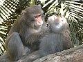 MalegroomingPhotoMinnaJHsu-2-.jpg