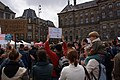 March Against Monsanto in Amsterdam, 25 May 2013.jpg