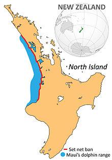Maui's dolphin range net ban.jpg