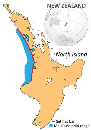 Maui's dolphin - Range of Maui's dolphin (blue) in New Zealand's North Island, with the area covered by the net ban marked in red