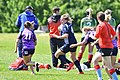May 2017 in England Rugby JDW 9096-1 (34630733566).jpg