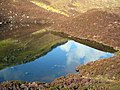 McQueen's Loch - geograph.org.uk - 364276.jpg