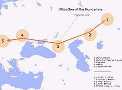 Migration of Hungarians.jpg
