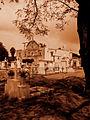Miguel Angel Enciso-Templo de San Juan Evangelista03.jpg
