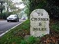 Mile Stone - geograph.org.uk - 1223962.jpg