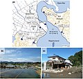 Miyagi - Ishinomaki -- Onosaki and Nagatsura -a- Tsunami heights -b and c- View of tsunami damage and ground subsidence.jpg