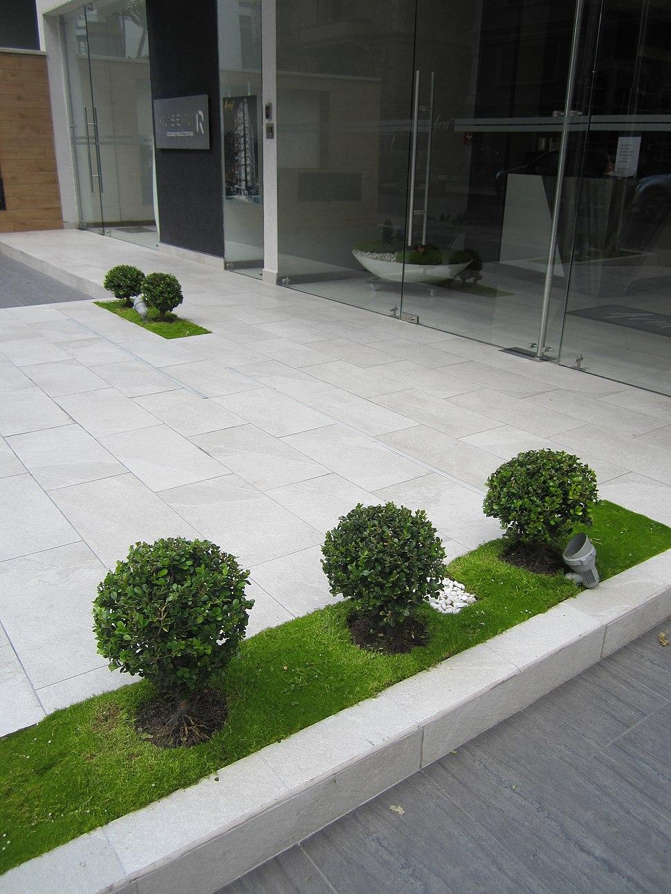 Modern Building in Quito, capital city of Ecuador, five bushes