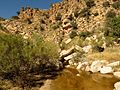 Molino Creek Pool - Flickr - treegrow.jpg