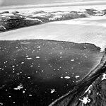 Moltke Glacier, Calving terminus, July 24, 1964 (GLACIERS 1696).jpg