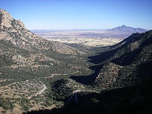 Sierra Vista, Arizona - Montezuma Pass at Coronado National Memorial. The United States / Mexican border fence can be seen in the middle of this photograph. Mexico is on the right / south side of the fence.