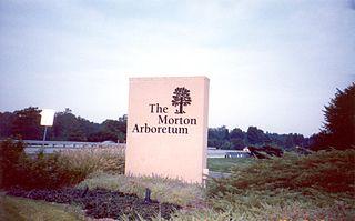Morton Arboretum non-profit organisation in the USA