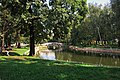 Moscow, Lianozovo Park - ponds (31268366530).jpg