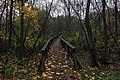 Moscow, footbridges over the swamp in Losiny Ostrov forest (31684457146).jpg