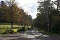 Mount Wilson NSW 2786, Australia - panoramio (52).jpg