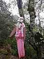 Muñeco colgante en Cuatro Palos, Pinal de Amoles.jpg