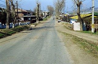 Murgeni,  Vaslui, Romania