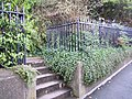 Museum of Barnstaple and North Devon Railings.jpg