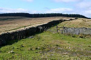 Mynydd Merthyr - Mynydd Merthyr