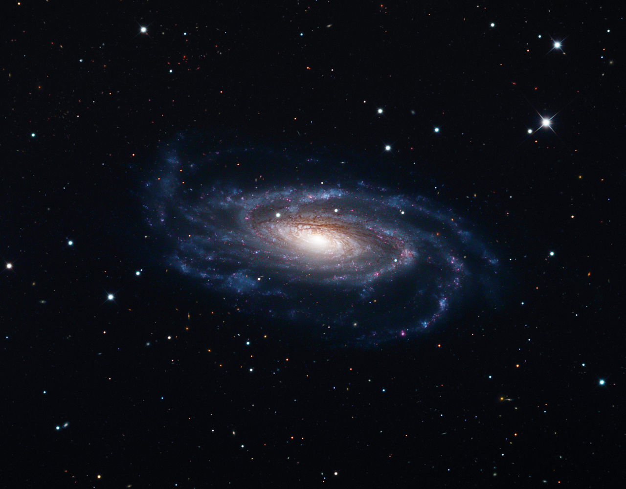 1280px-NGC_5033%2C_Schulman_Foundation_32_inch_telescope_on_Mt._Lemmon%2C_AZ.jpg