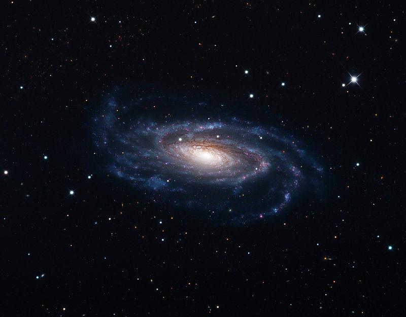 NGC 5033, Schulman Foundation 32 inch telescope on Mt. Lemmon, AZ.jpg