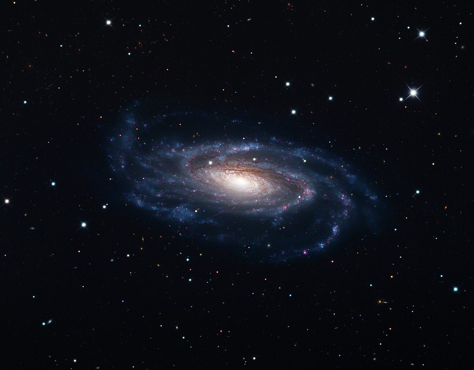 NGC 5033, Schulman Foundation 32 inch telescope on Mt. Lemmon, AZ.jpg