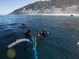 São José Paquete Africa - Divers near the wrecksite