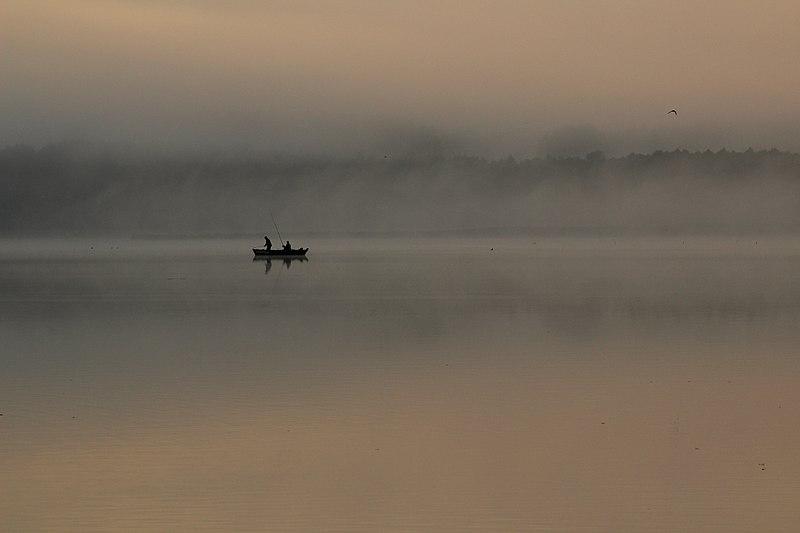 File:Nad jeziorem Wigry 01.jpg