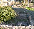 Nahsholim-Tel-Dor-3227.jpg