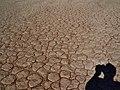 Namibia Namib-Naukluft-Nationalpark Dead Vlei 18.jpg