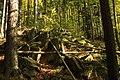 Nature reserve Ptaci stena in autumn 2011 (5).JPG