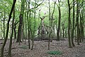 Naturschutzgebiet Zarth im Mai 2017.jpg