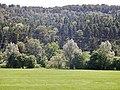 Neckar zwischen Sulz und Horb - panoramio (3).jpg