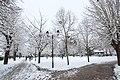 Neige à Saint-Rémy-lès-Chevreuse le 7 février 2018 - 64.jpg