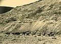 Nesher Old Quarry on 1937 (8).jpg