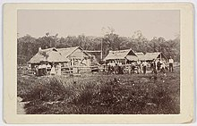 220px-New_Australia_settlement%2C_Paraguay%2C_between_1892-1905_-_unknown_photographer_%283532740438%29.jpg