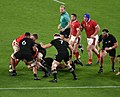 New Zealand national rugby 20191101d15.jpg