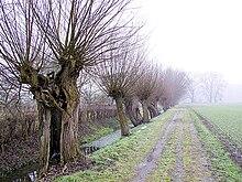 Niederrhein Region Wikipedia