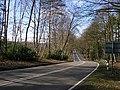 Nine Mile Ride, Bracknell - geograph.org.uk - 1181918.jpg