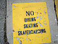 No Skateboarding.jpg