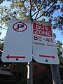 No parking and BUS ZONE sign.jpg