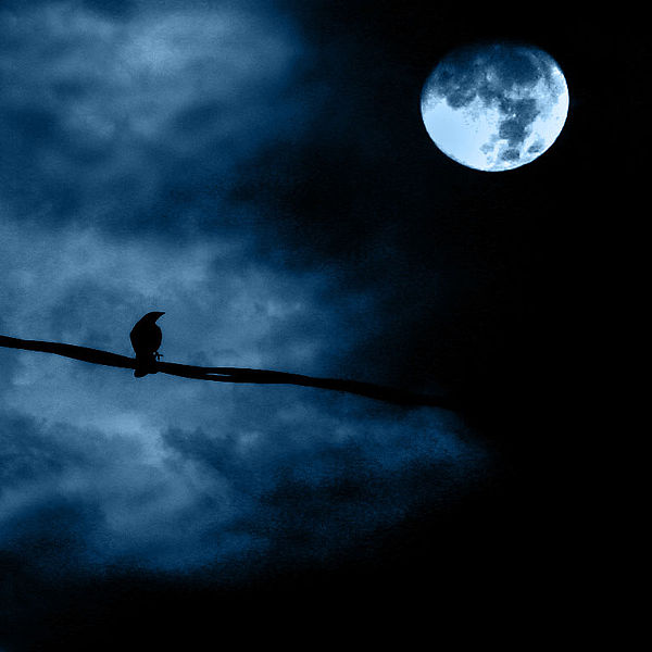 File:Noche de luna llena - Full moon night.jpg