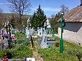 Nyzhniv, church and cemetery.jpg
