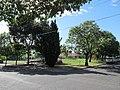 OIC nailsworth prospect gardens 1.jpg
