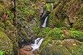 Oberried (Breisgau) - oberer Buselbach-Wasserfall III.jpg