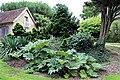 Ornamental shrub bed in Nuthurst village, West Sussex, England.jpg