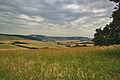 Ostrý vrch, Vrbovce, okres Myjava.jpg